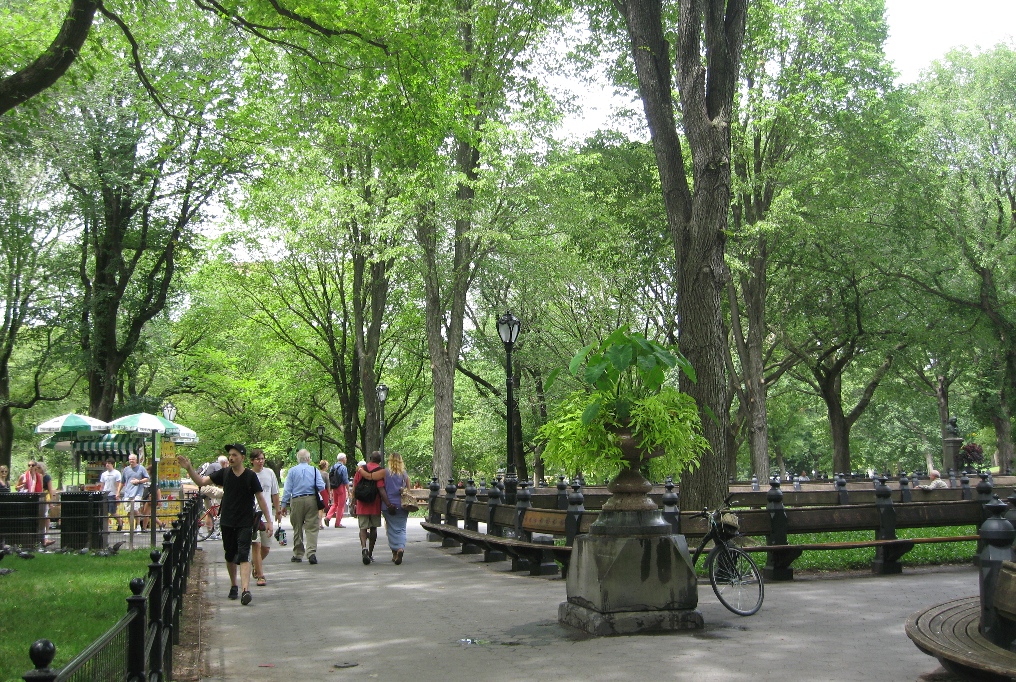 One of Central Parks Broad Avenues. Photo by me