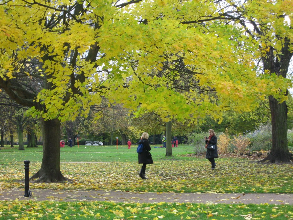 """A friend captures the foliage and her friend in a photo, while a group of children practice their """"football"""" (soccer in the US) in the background. Photo by me."""