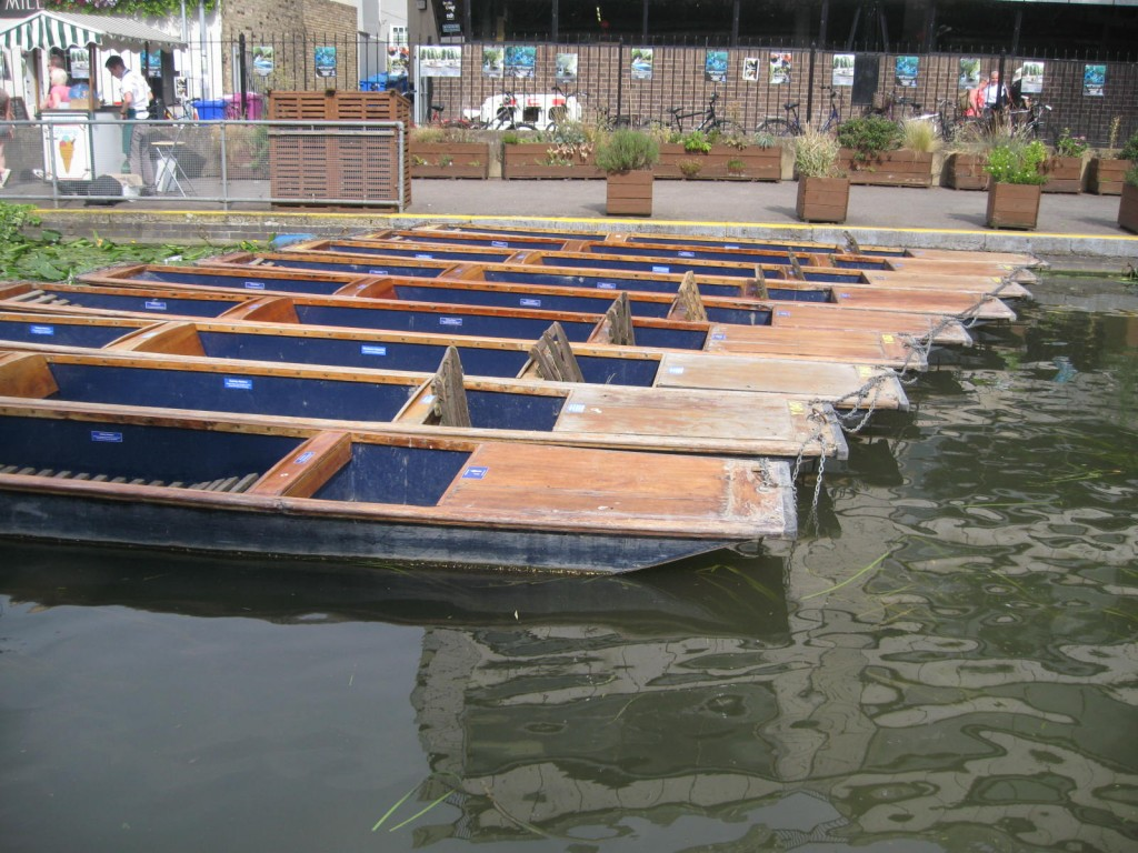 The punts lined up on the River Cam ready for action. Photo by me.