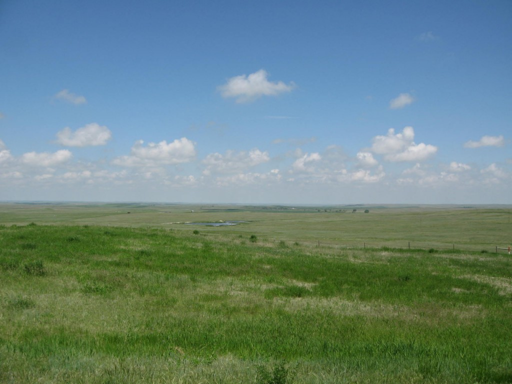 The Plains, grasslands of the midwest United States
