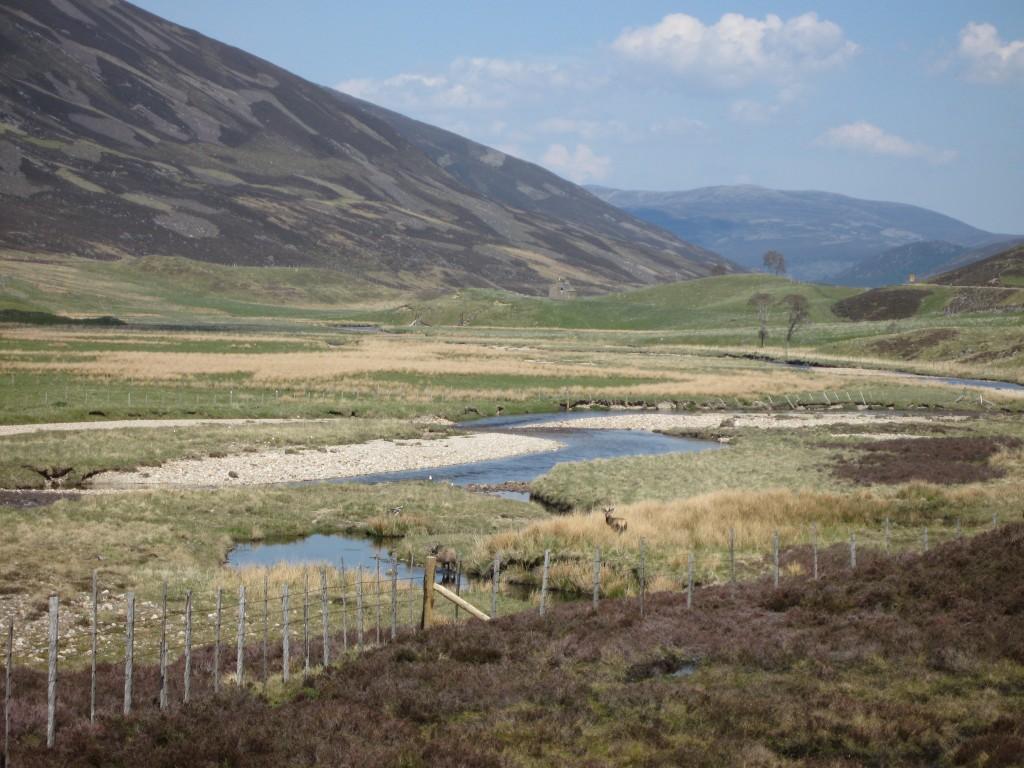Scotland on the way to Balmoral