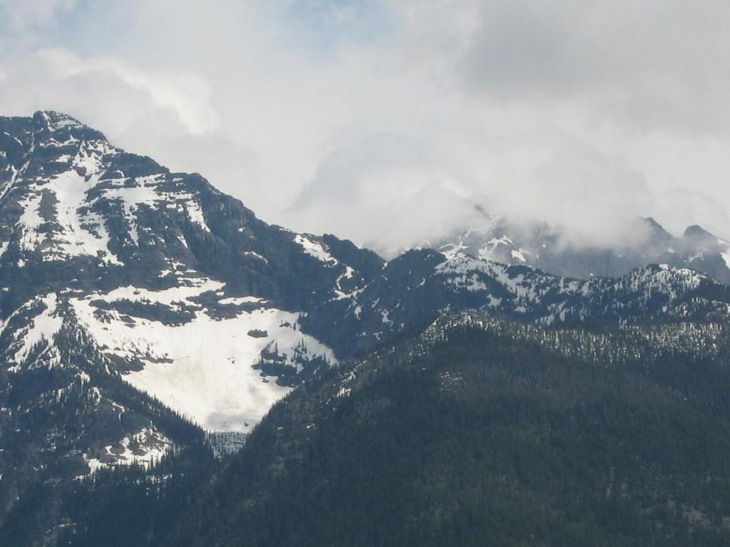 Near Lake McDonald at Glacier National Park in Montana.